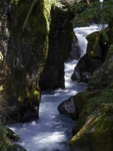 Glacier NP-317-Falls
